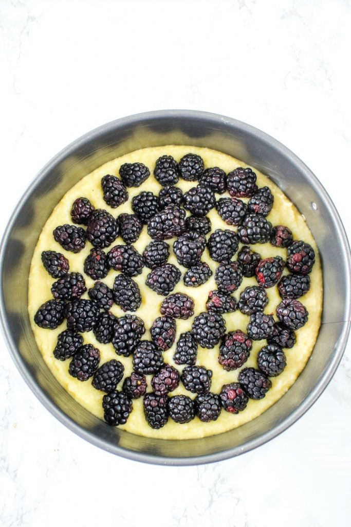 Batteer and blackberries ready for the oven in springform pan